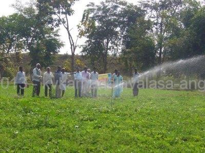 Sprinkler Irrigation in Ground Nut.JPG