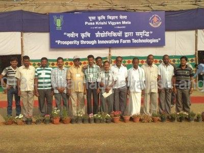 Exposer visit to Pusa kisan mela at New delhi.JPG